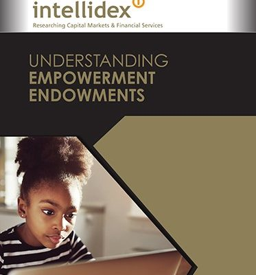 Understanding Empowerment Endowments is a report by Intellidex, funded by Tshikululu Social Investments.